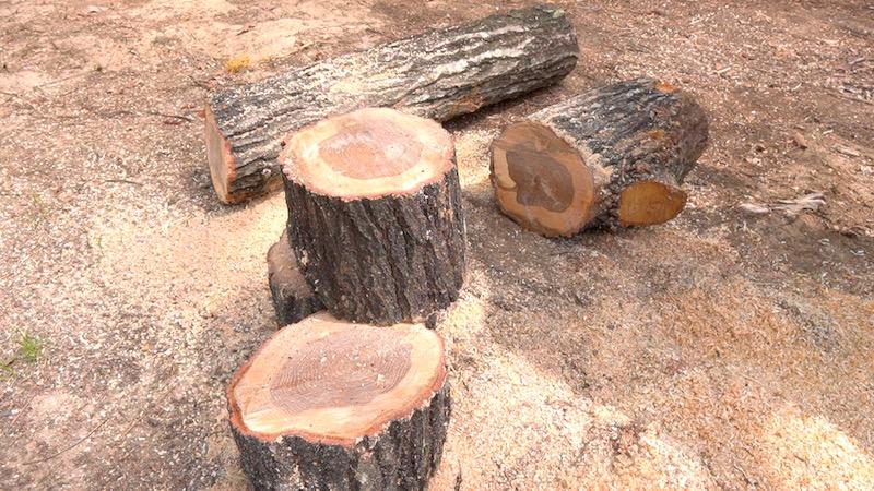 薪割り台を作る09